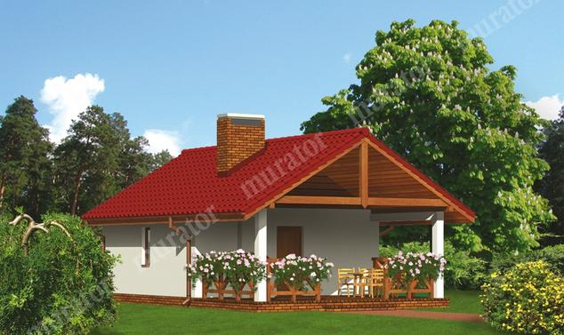 Projekt budynku:  Murator G22